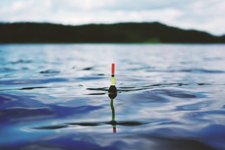 Horgászati tippek kezdőknek
